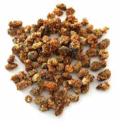 White Mulberry Bay - 1/2 kg...