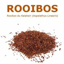 "ROOIBOS Infusion ""Buisson..."
